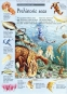 The Great Wildlife Search (Usborne Great Searches) 3