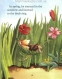 Illustrated Stories for the Holidays (Usborne Anthologies and Treasuries) 5
