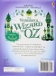 The Wonderful Wizard of Oz (Illustrated Originals) 0