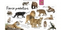 My First Zoo Let's Meet the Animals! (Tabbed Board Books) 2